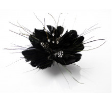 Ozdoba do vlasů Black Feather Fascinator